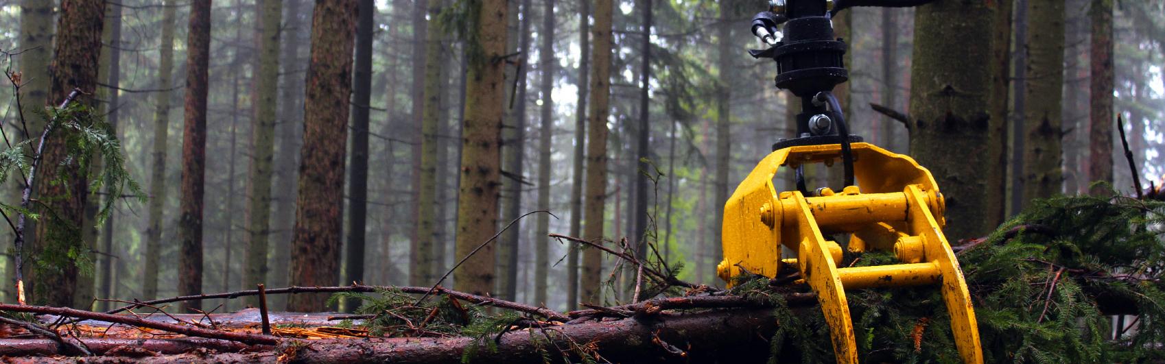 Graifere forestiere si rotatoare hidraulice